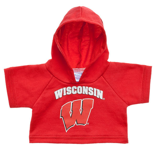 University of Wisconsin Hoodie, , hi-res