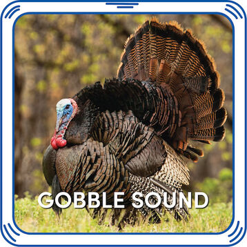 Gobble gobble! Add a sound to your Gobblin' Turkey or any other furry friend to give the perfect Thanksgiving gift!