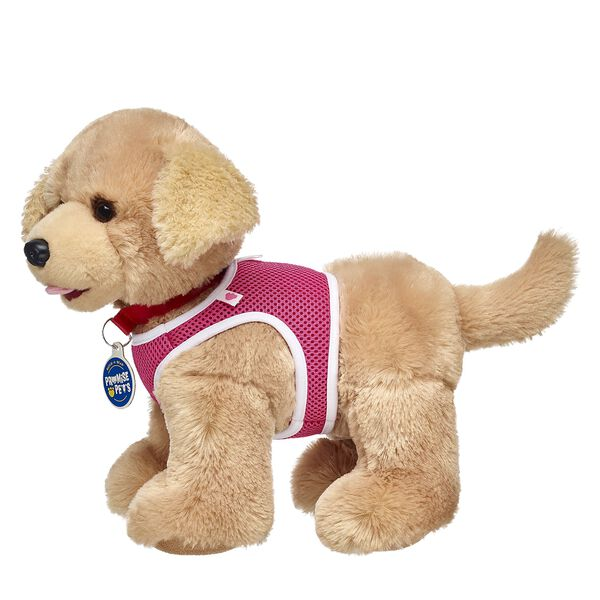 Now you can train and play with your Promise Pets in this pet-sized pink harness! Don't forget to add a leash so you can walk your furry friend! Personalize a furry friend to make the perfect gift. Free shipping on orders over $45. Shop online or visit a store near you!