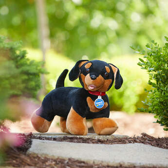 Dachshunds go by the nickname wiener dogs because of their long bodies! They're spunky pups that love to chase a ball or cuddle up under a blanket.