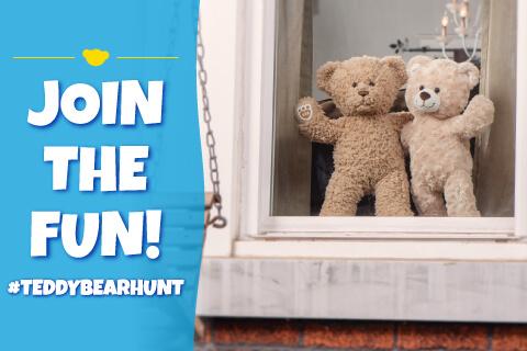 Teddy Bear Hunt - Bears in a window - Join the fun!