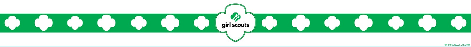 Girl Scouts Banner